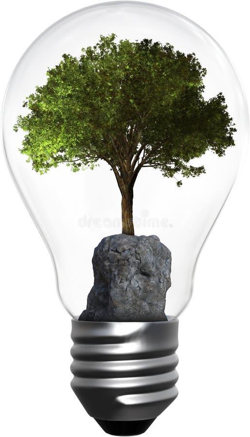 Электрическая лампочка, дерево, изолированная окружающая среда, энергия, зеленая стоковые фото