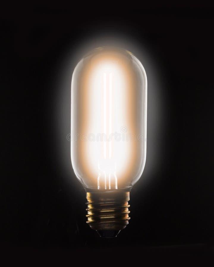 Электрическая лампочка нити вольфрама Lit на черной предпосылке стоковые фото