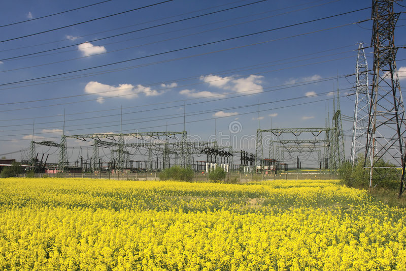 электрические опоры сельскохозяйствення угодье стоковое фото rf