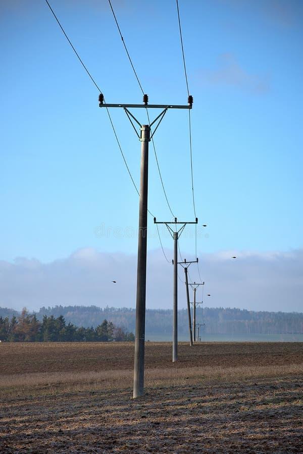 Электрические штендеры в ряд стоя в поле стоковые фотографии rf