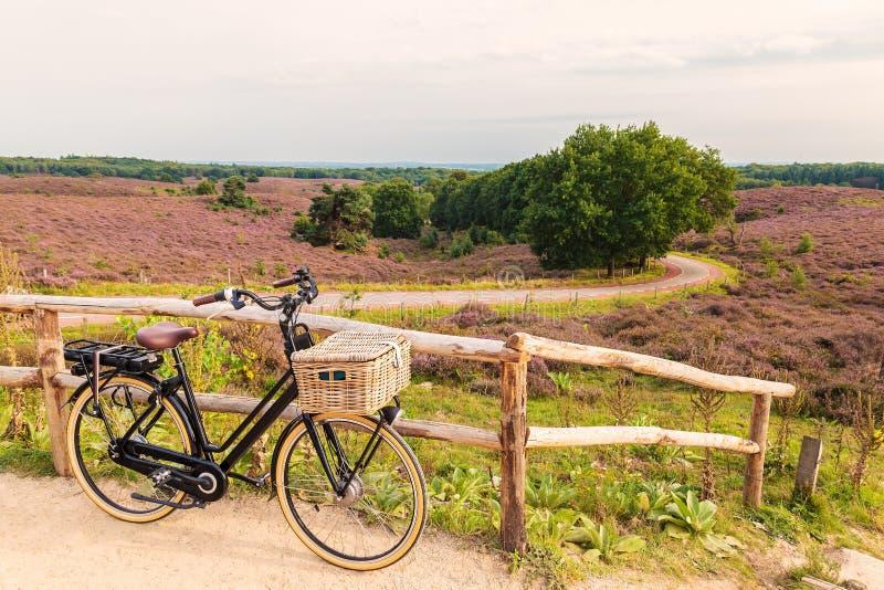 Электрический велосипед с корзиной в голландском национальном парке Veluwe стоковое изображение