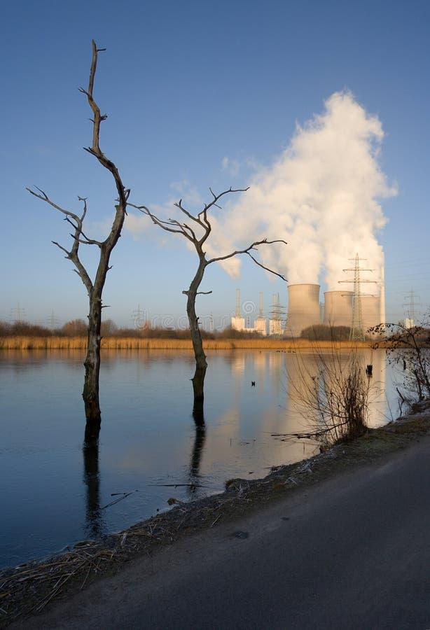 Электростанция и мертвые деревья стоковая фотография rf