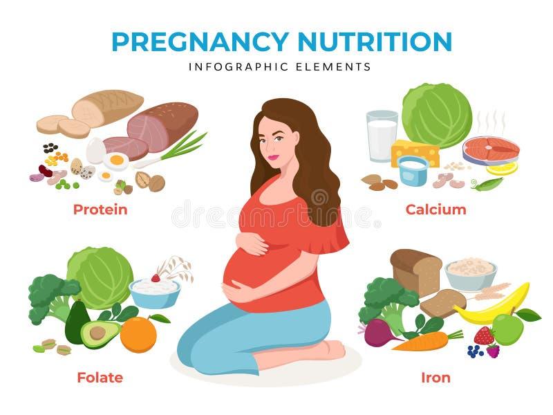 Элементы питания беременности infographic в плоской иллюстрации вектора дизайна Персонаж из мультфильма беременной женщины бесплатная иллюстрация
