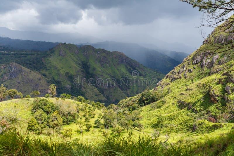 ЭЛЛА, ШРИ-ЛАНКА - 17-ОЕ ЯНВАРЯ 2017: красивый сценарный взгляд гор покрытых с зелеными растениями в Азии стоковое изображение