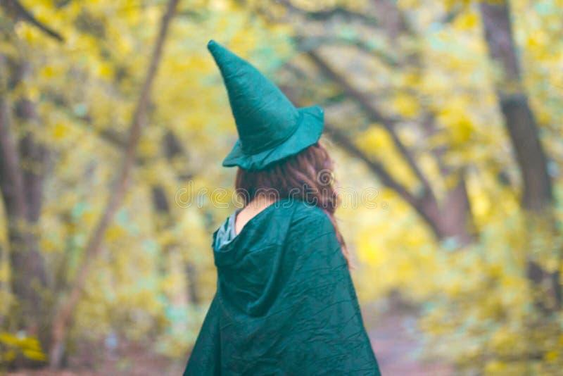 Эльф леса, фея, ведьма стоковые изображения rf