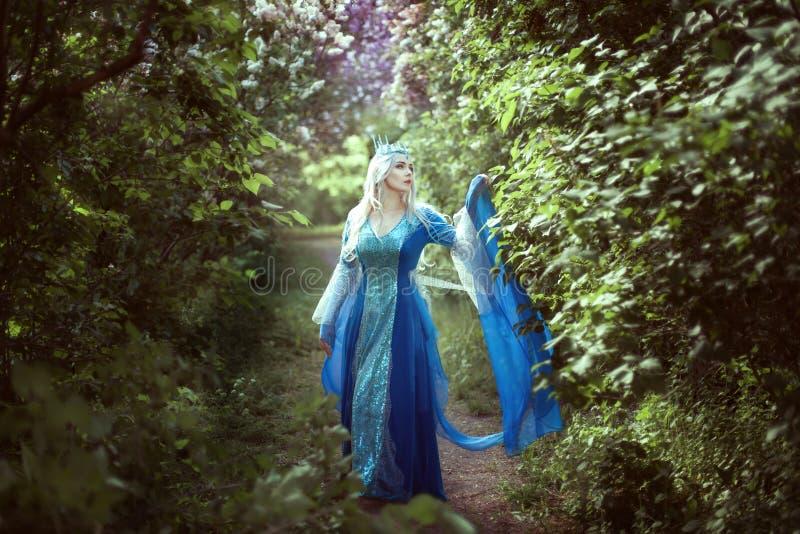 Эльф молодой женщины стоя в fairy лесе стоковое изображение rf
