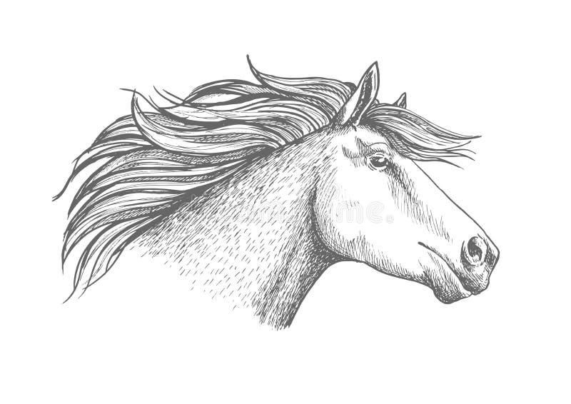Эмблема спорта эскиза головы лошади бесплатная иллюстрация