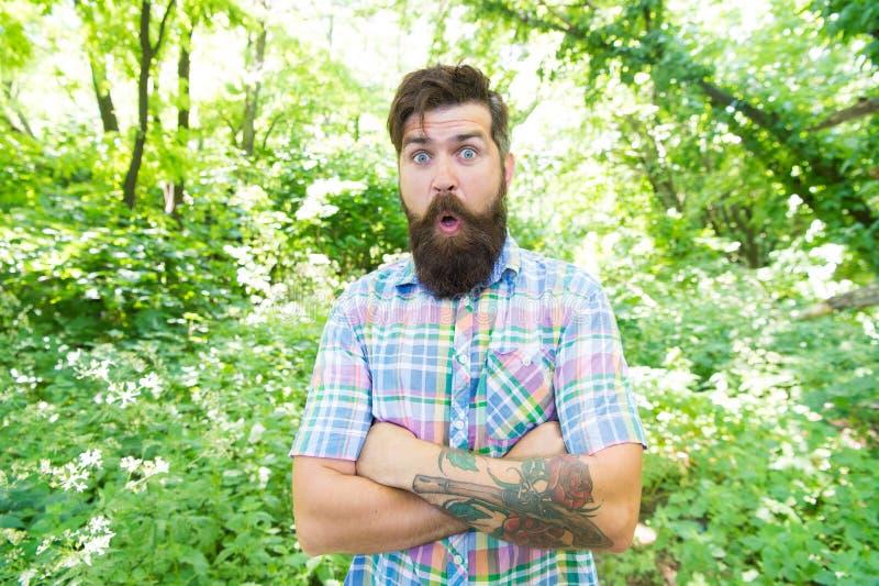 Эмоциональный любитель природы Гай ослабляет в природе лета Борода и усик человека красивая в летних каникулах леса лета стоковые изображения rf