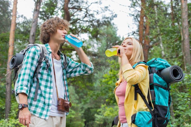 Энергия молодых пеших пар выпивая выпивает в лесе стоковая фотография rf