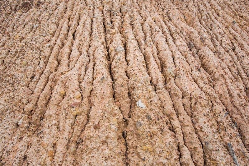 Эрозия почвы водой стоковые фотографии rf