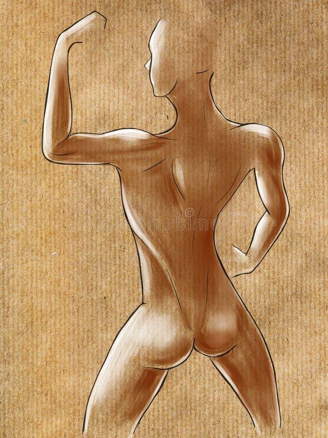 Эскизы мышечной женской диаграммы иллюстрация вектора