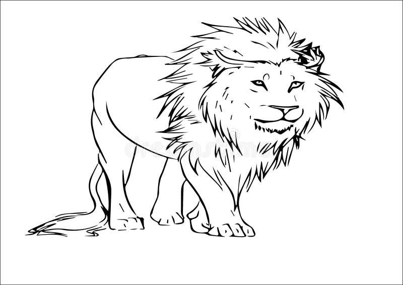 Эскиз вектора льва стоковые фото