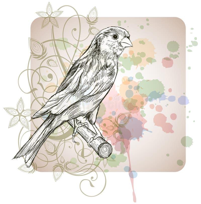 эскиз ветви птицы канереечный сидя иллюстрация вектора