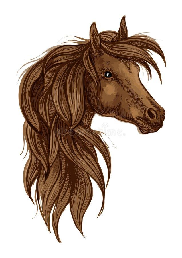 Эскиз головы лошади Брайна аравийский изолированный бесплатная иллюстрация