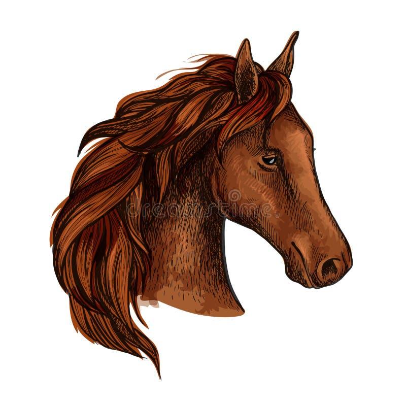 Эскиз головы лошади жеребца Брайна иллюстрация вектора