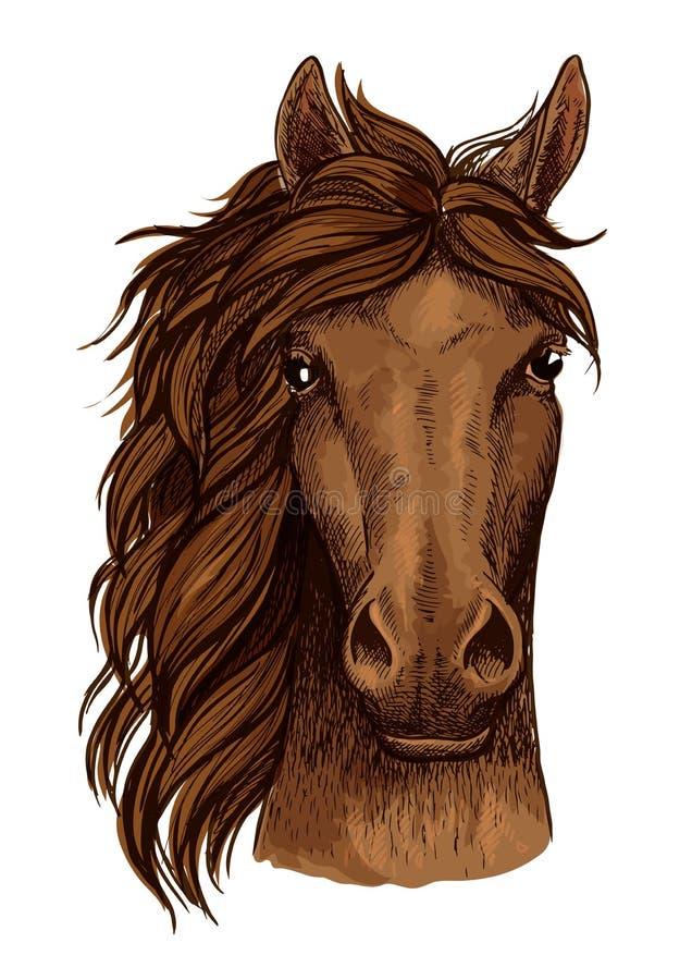 Эскиз головы лошади коричневой аравийской скаковой лошади иллюстрация вектора