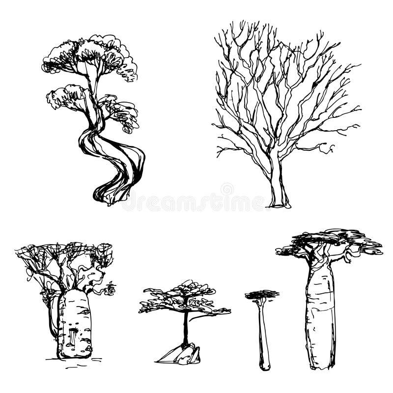 Эскиз дерева установленный стоковое изображение