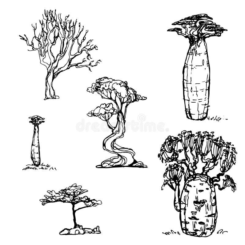Эскиз дерева установленный стоковая фотография rf
