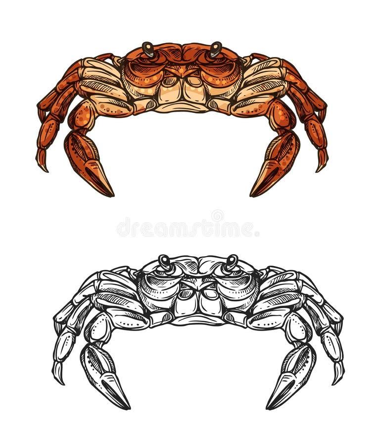 Эскиз краба морского животного, ракообразный r иллюстрация вектора