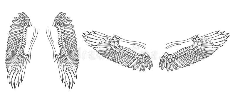 Эскиз крылов Птица или крыла ангела нарисованные рукой вектор иллюстрация штока