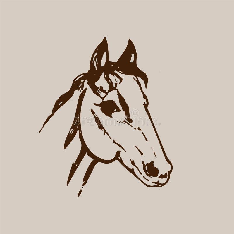 Эскиз нарисованный рукой головы лошади Линия чертеж чернил Брайна изолированный на бежевой предпосылке Портрет мустанга Иллюстрац иллюстрация вектора