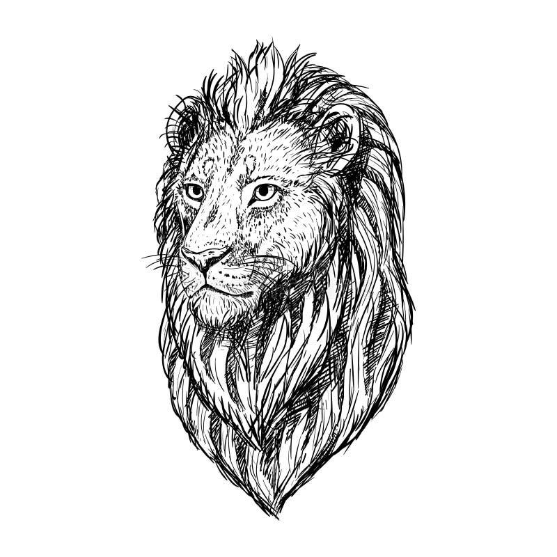 Эскиз нарисованный рукой головы льва также вектор иллюстрации притяжки corel иллюстрация вектора