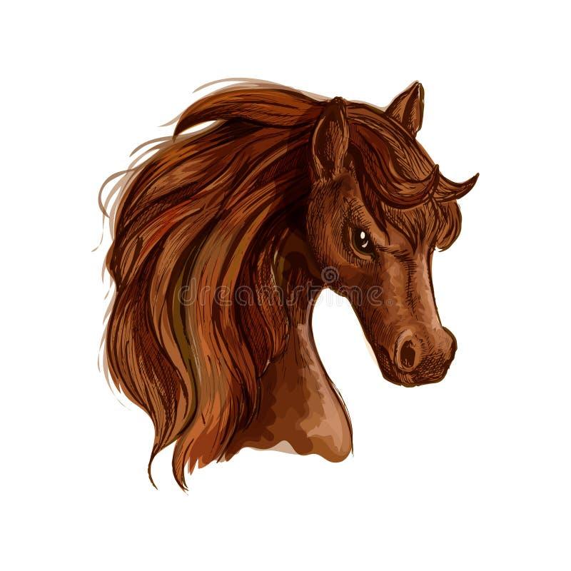 Эскиз лошади конематки Брайна аравийский для equine дизайна иллюстрация штока