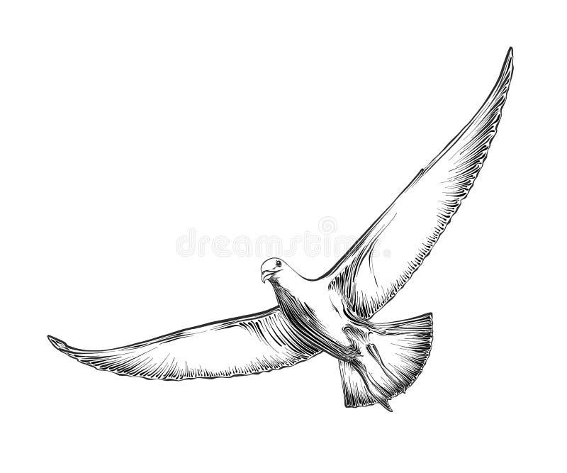 Эскиз руки вычерченный чайки в черном цвете r r бесплатная иллюстрация