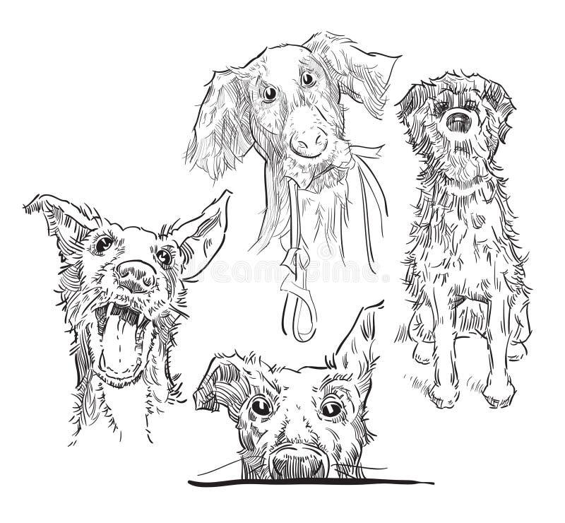 Эскиз собак бесплатная иллюстрация