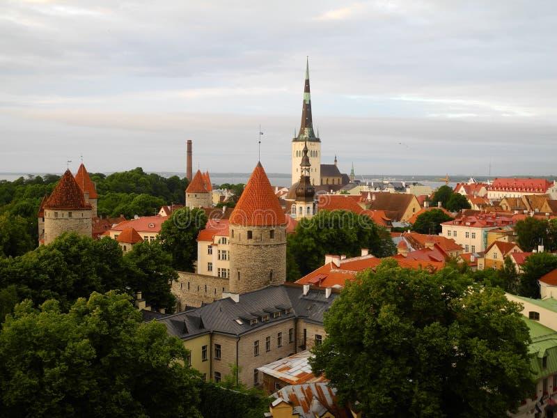 эстония старый tallinn стоковое фото rf