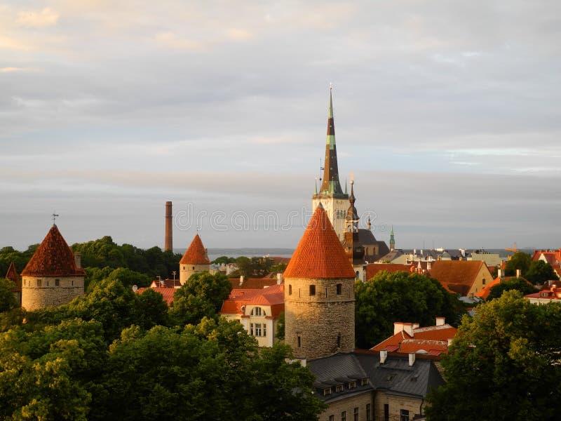 эстония старый tallinn стоковые фотографии rf