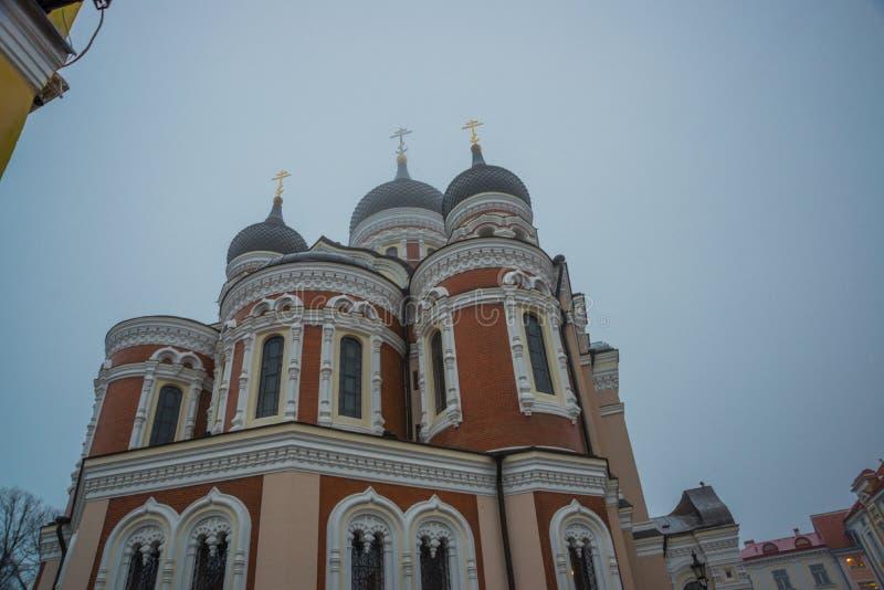 эстония tallinn Взгляд собора Александра Nevsky Известный правоверный собор куполок Таллина самый большой и самый большой правове стоковые изображения rf