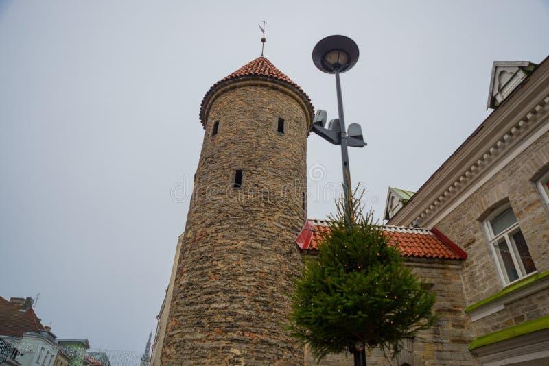 эстония tallinn Известные ворота Viru ориентира в уличном освещении старый городок Популярное touristic место стоковое изображение rf