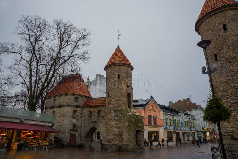 эстония tallinn Известные ворота Viru ориентира в уличном освещении старый городок Популярное touristic место стоковое фото