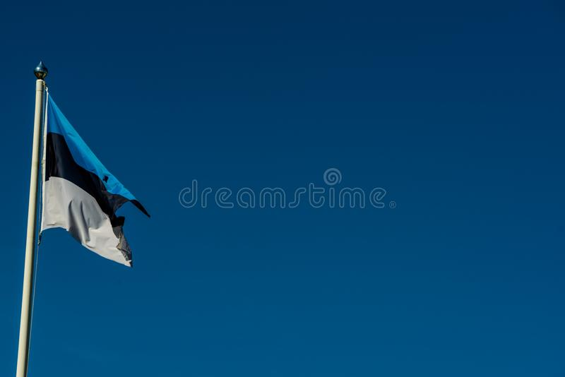 Эстонский национальный флаг - черная белая синь стоковое фото rf