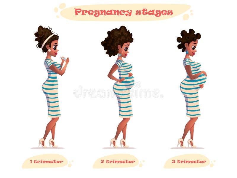 Этапы иллюстрации вектора беременности черной беременной женщины Афро-американская беременная Изменения в теле ` s женщины в бере иллюстрация штока