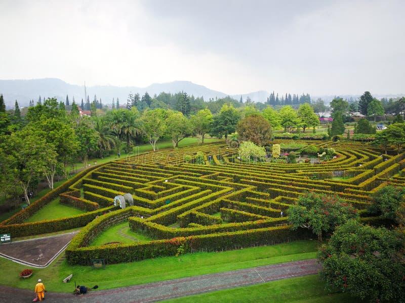 Эти фото были приняты от Индонезии в 2018 стоковое изображение