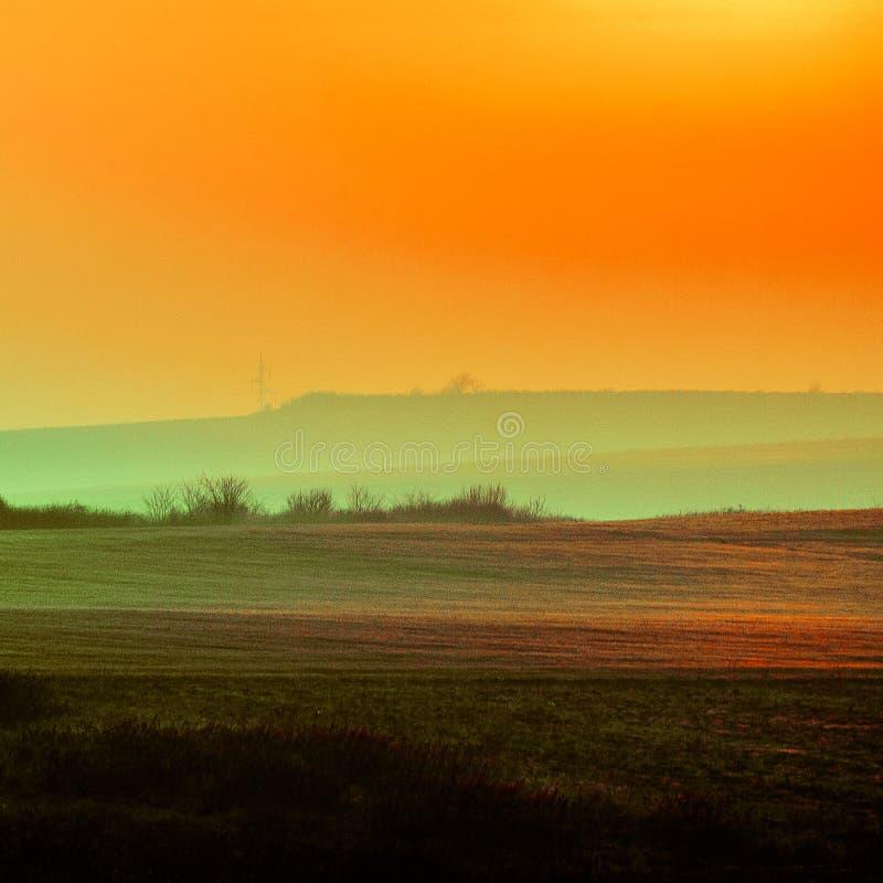 Золотой ландшафт стоковое изображение