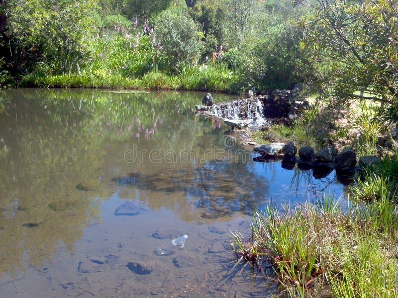 Это водопад пруда стоковое изображение