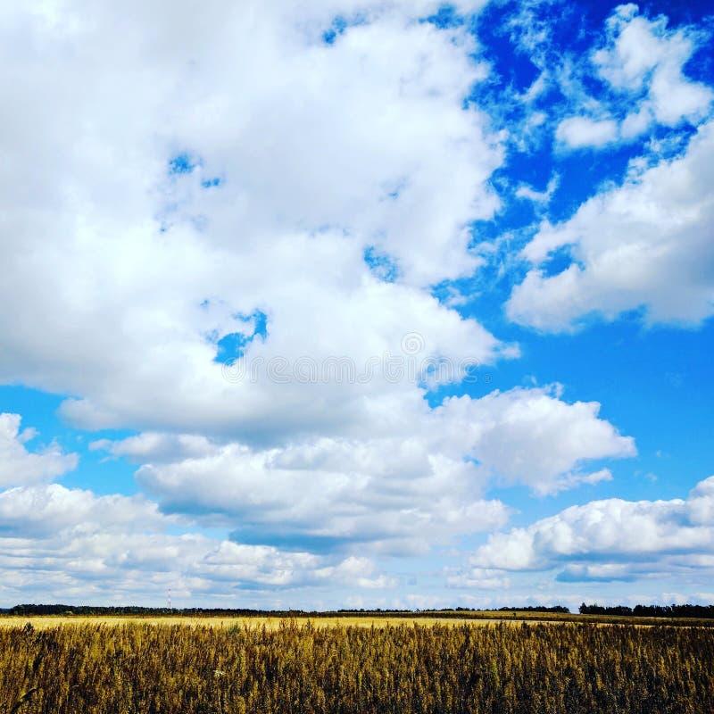 Это cant ` s слишком много неба стоковое изображение rf