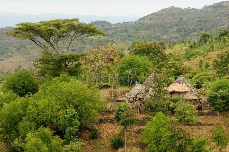 Эфиопская деревня в долине Omo стоковое изображение rf