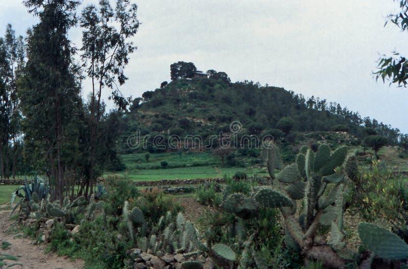 Эфиопский пейзаж Акум, Тыграй, Эфиопия стоковая фотография
