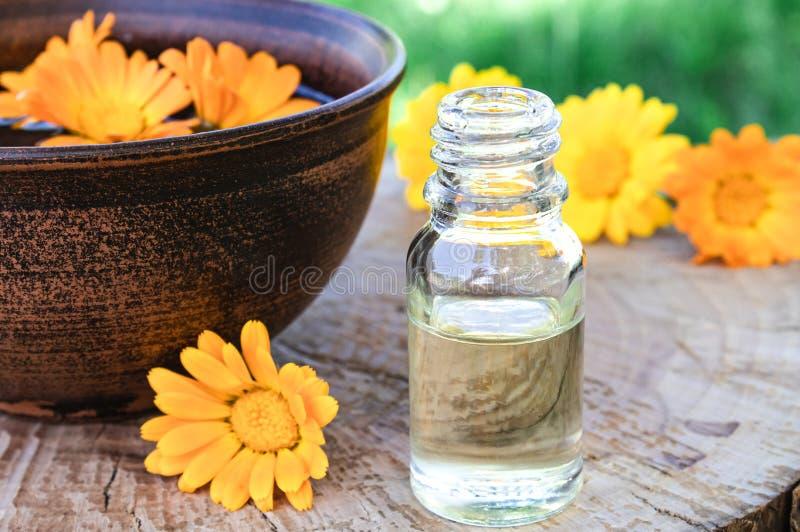 Эфирное масло ароматерапии с цветками calendula на деревянной предпосылке в природе Выдержка тинктуры calendula в шаре стоковая фотография rf