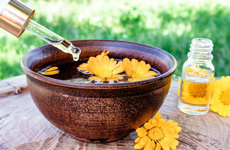 Эфирное масло ароматерапии с цветками calendula на деревянной предпосылке в природе Выдержка тинктуры calendula в шаре стоковое изображение rf
