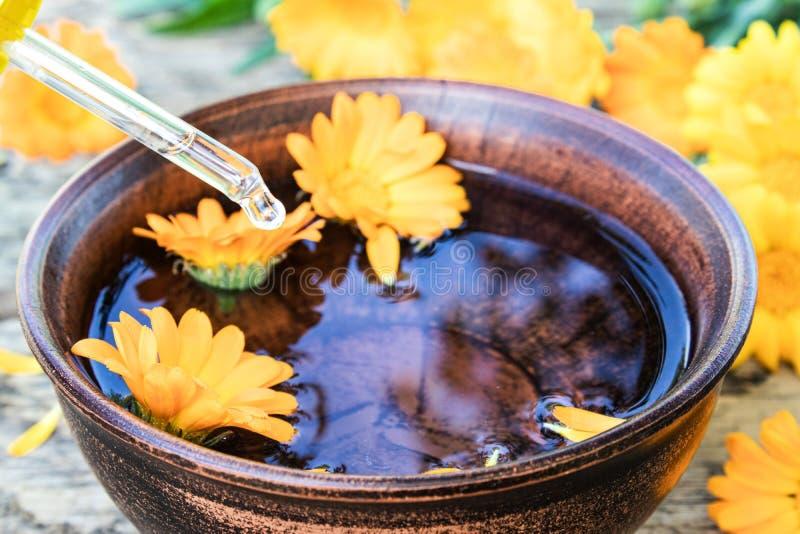 Эфирное масло Calendula около желтых цветков calendula на деревянной предпосылке Выдержка тинктуры calendula в шаре стоковая фотография