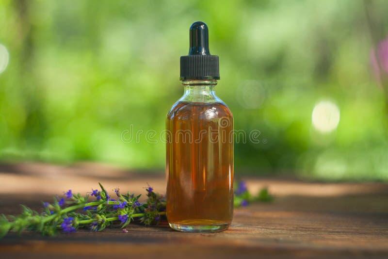 Эфирное масло Hyssop в красивой бутылке на таблице стоковые изображения