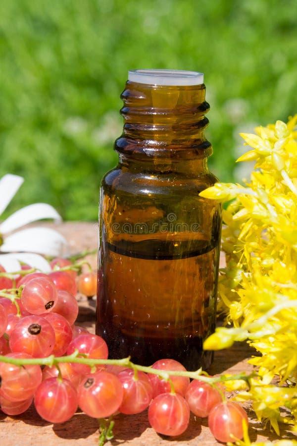 Эфирное масло с желтыми цветками стоковая фотография rf