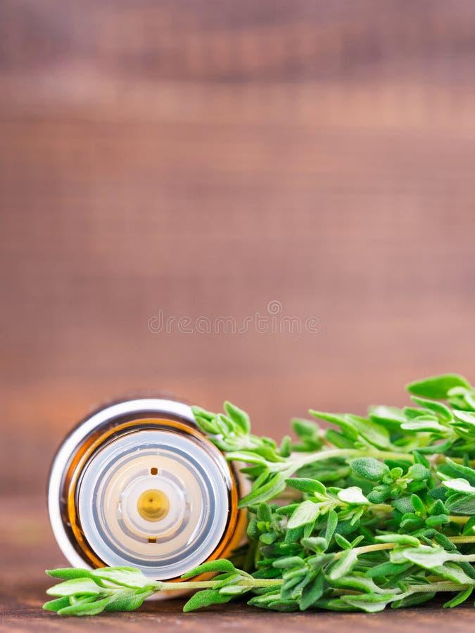 Эфирное масло тимиана стоковая фотография rf