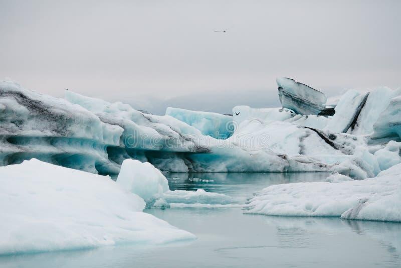 эффектный исландский ландшафт с белыми и голубыми айсбергами на пасмурном дне, Исландия, стоковое изображение