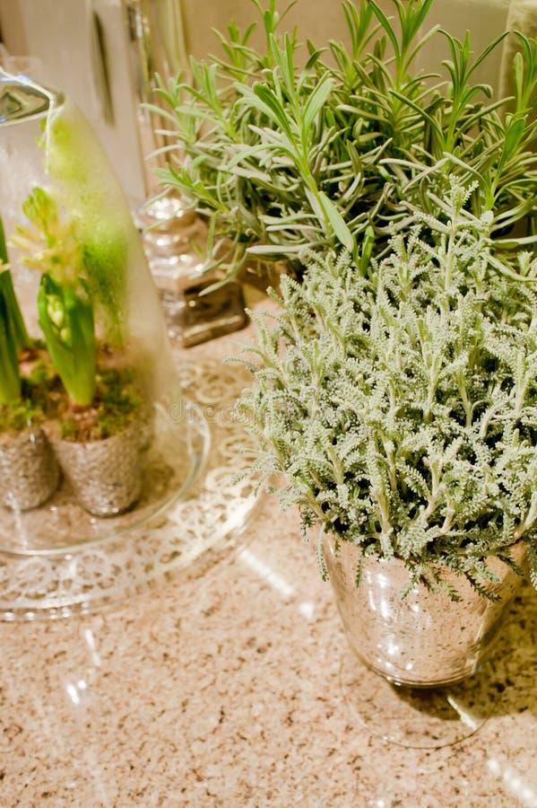 Элегантное worktop кухни с цветками стоковое изображение
